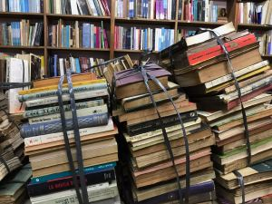 Dans la libreria de Avila - Buenos Aires - Argentine