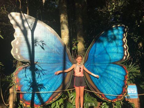 Une fillette papillon - Parque Das Aves - Iguazu - Brésil