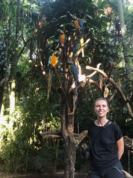 Avec les aras - Parque Das Aves - Iguazu - Brésil