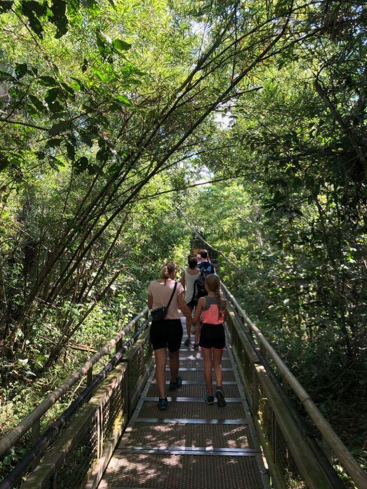 Sur les passerelles - Sentier Supérieur - Chutes d'Iguazu côté Argentine
