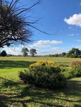 Autour de l'Estancia - Pampa - Argentine