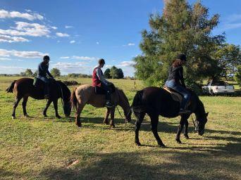 A cheval dans la Pampa - Argentine