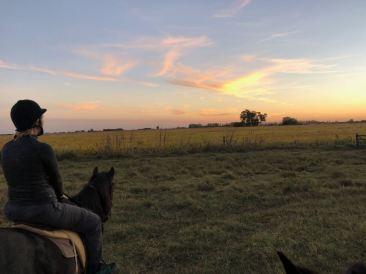Balade à cheval au coucher du soleil - Pampa - Argentine