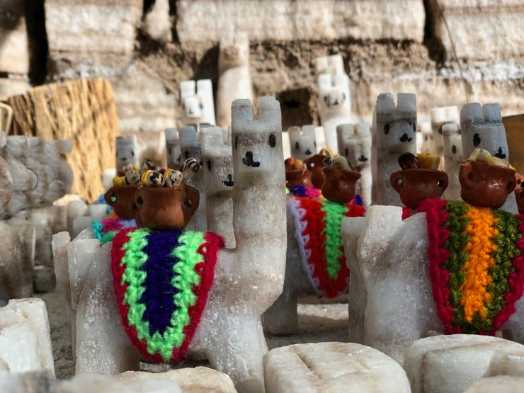Lamas miniatures en sel - Salinas grandes - Nordeste - Argentine