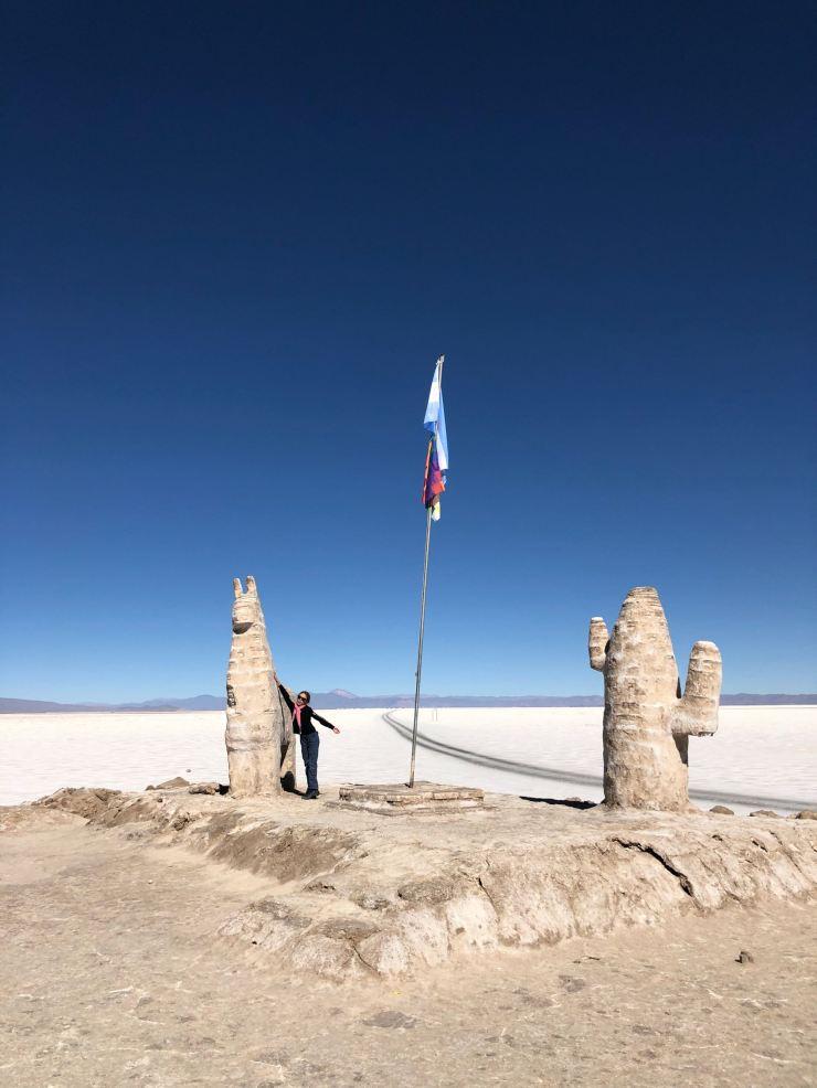Lama et cactus de sel - Salinas Grandes - Nordeste - Argentine