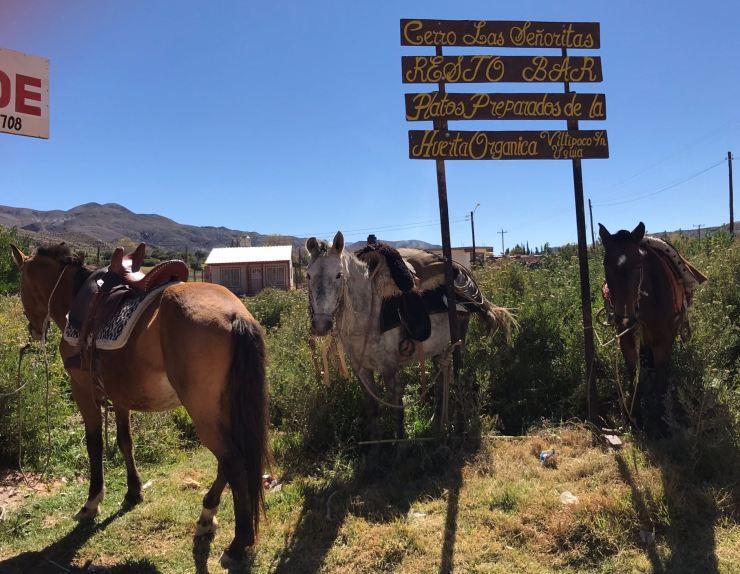 Parking à chevaux - Uquia - Nordeste - Argentine