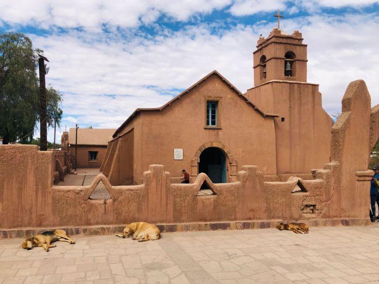 Eglise et chiens - San Pedro de Atacama - Chili