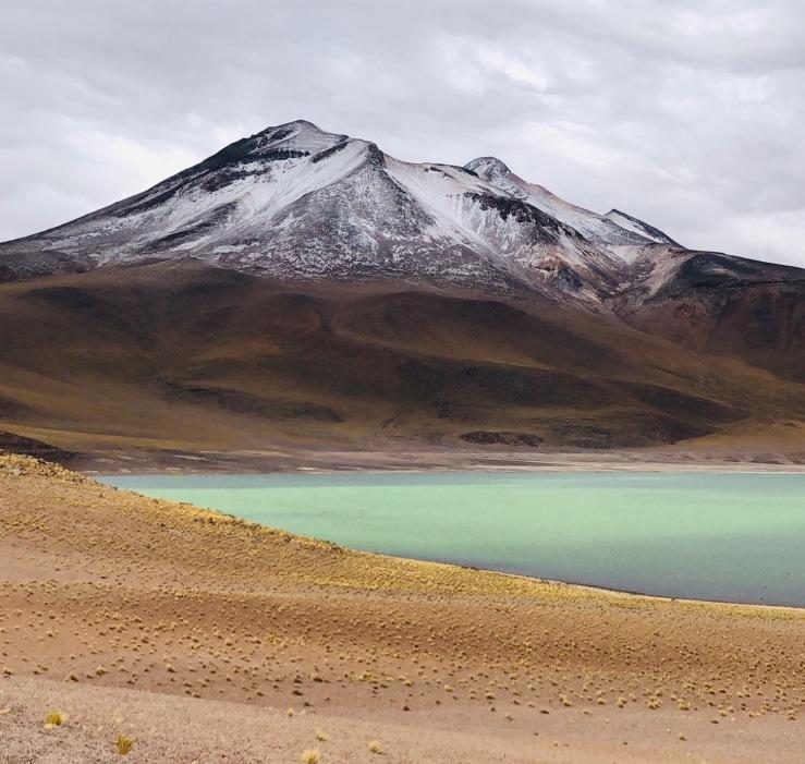 Laguna Miscanti - Désert d'Atacama - Chili