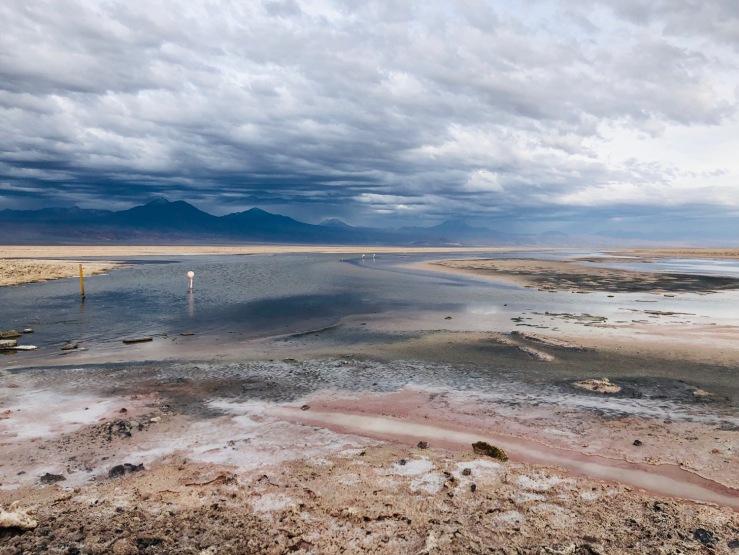 Laguna Chaxa - Salar d'Atacama - Chili