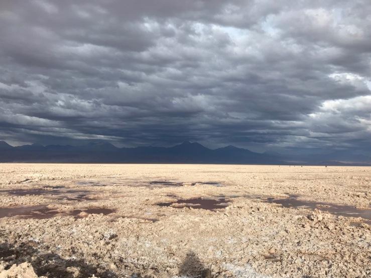 Salar d'Atacama- Désert d'Atacama - Chili