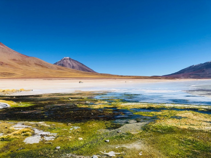 Laguna Blanca - Sud Lipez - Bolivie
