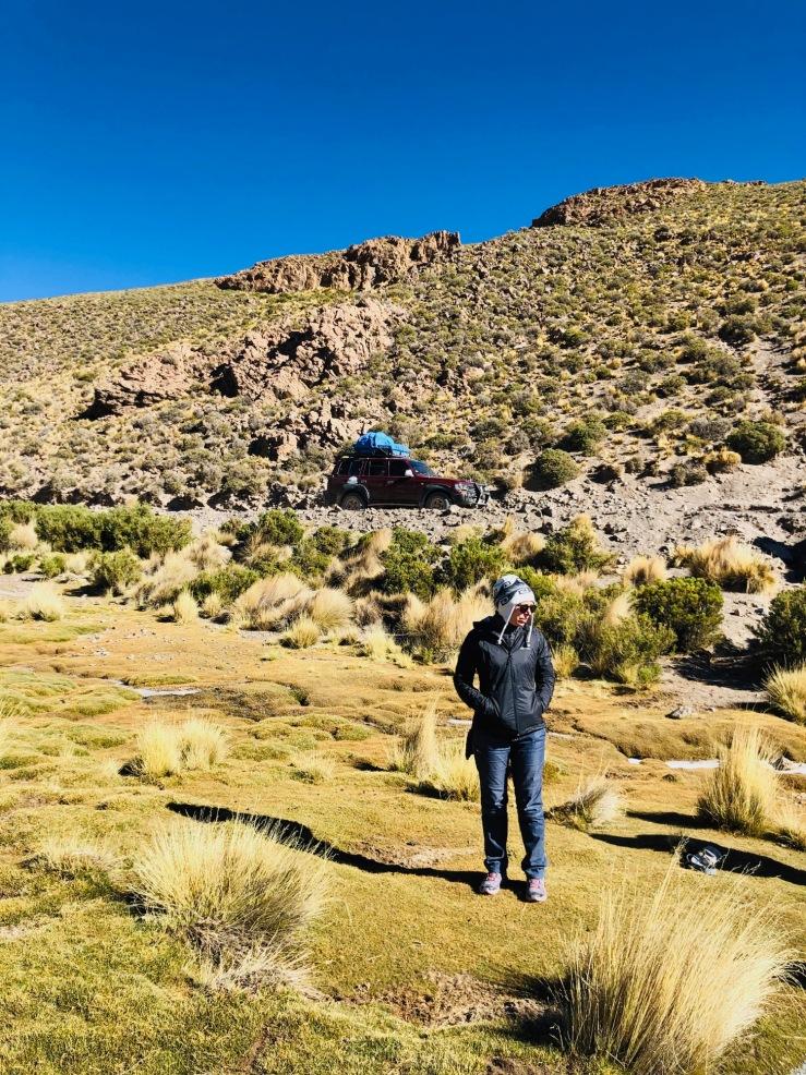 Beauté de l'Altiplano au petit matin - Sud Lipez - Bolivie