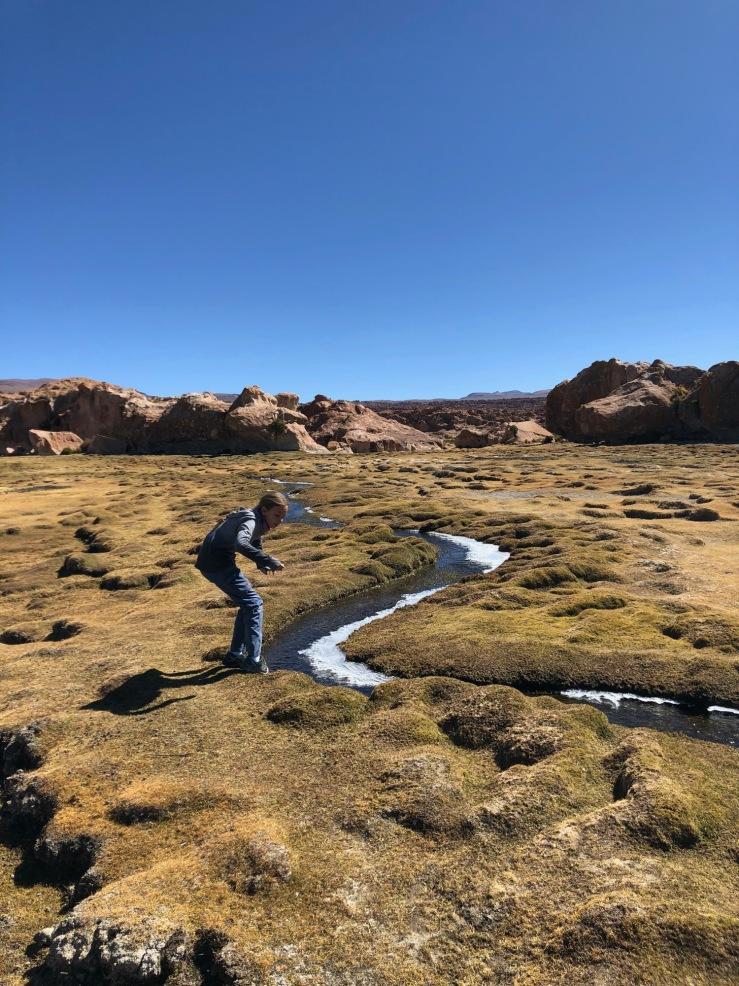 Laguna Misteriosa - Bofedales- Sud Lipez - Bolivie