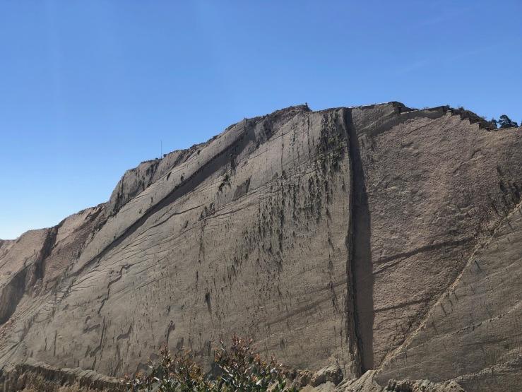 La fameuse paroi aux 5000 empreintes de dinosaures - Parque Cretacico - Sucre - Bolivie