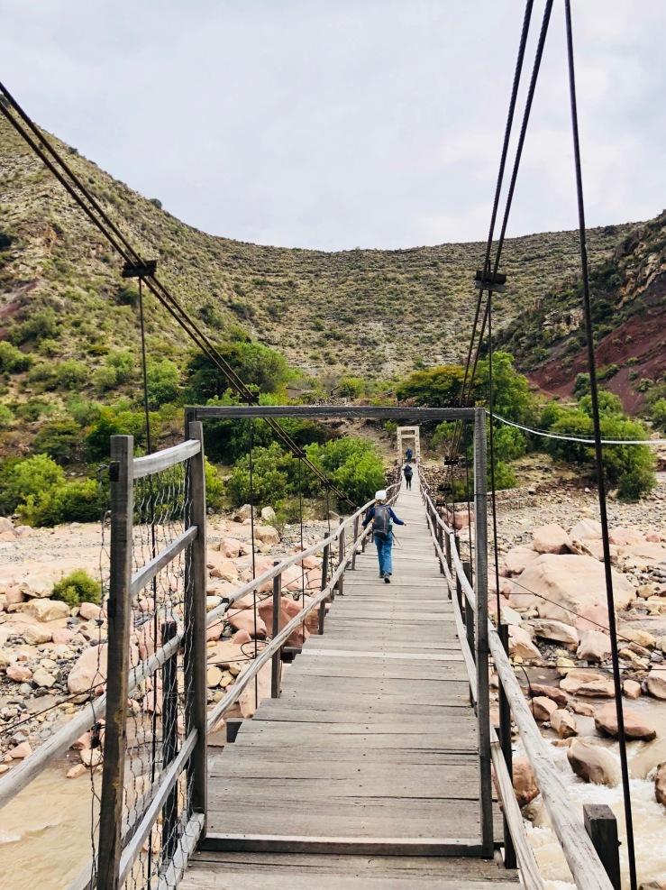 Pont de singe - Région de Sucre - Bolivie