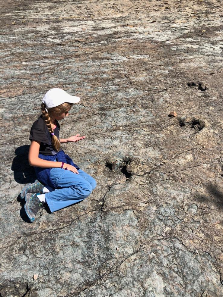 Empreintes de Dinosaures - Région de Sucre - Bolivie