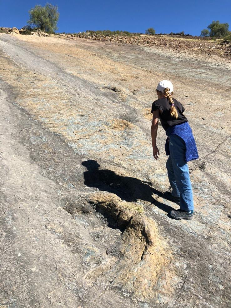 Traces de dinosaures - Région de Sucre - Bolivie