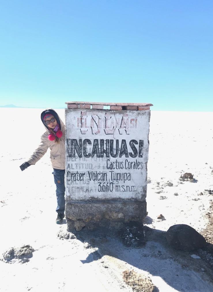 Autour de la Isla Incahuasi - Salar d'Uyuni - Bolivie